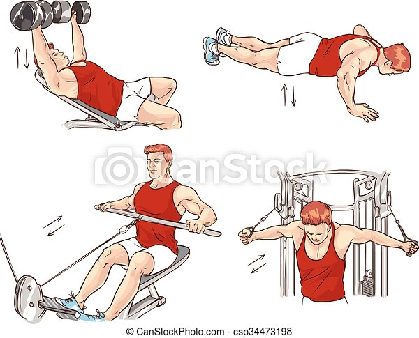 vector illustration of a bodybuilding exercise - csp34473198