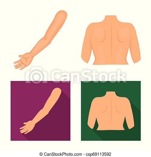Vector illustration of body and part symbol. Set of body and anatomy vector icon for stock. - csp69113592