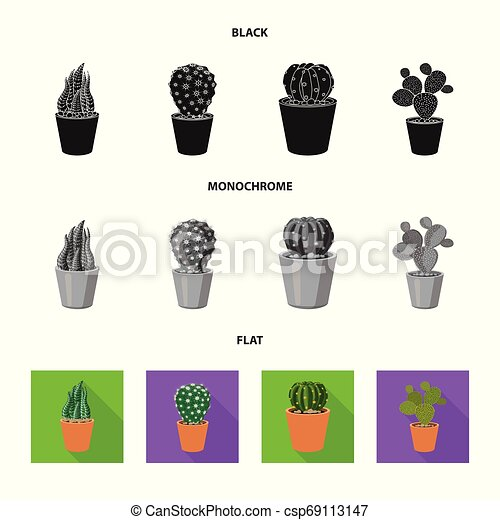 Vector illustration of cactus and pot logo. Set of cactus and cacti vector icon for stock. - csp69113147