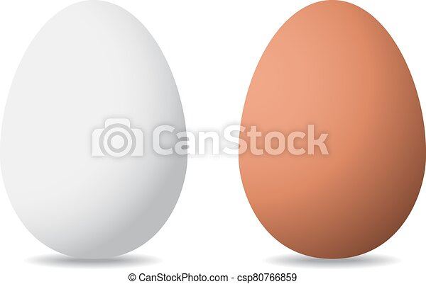 vector illustration of eggs on white background - csp80766859