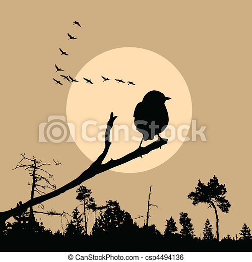 vector illustration of the bird on branch - csp4494136