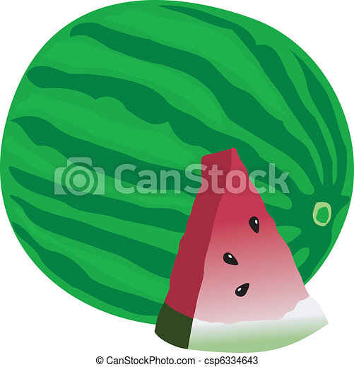 vector illustration of watermelon - csp6334643