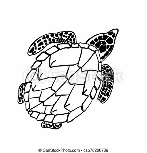 - Vector Image Of A Big Turtle. Coloring Book For Children And Adults.  Hand-drawn Turtle For Your Compositions. Vector Image.