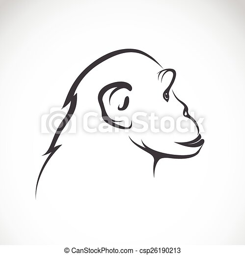 Vector image of a chimpanzee on white background - csp26190213