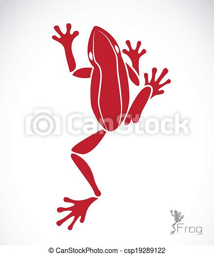 Vector image of a frog - csp19289122