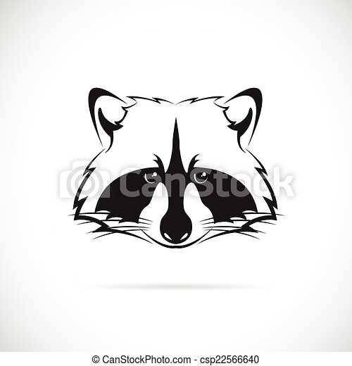 Vector image of a raccoon face on white background - csp22566640