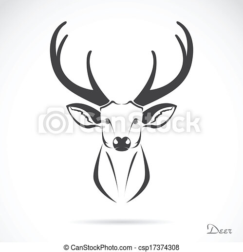 Vector image of an deer head - csp17374308