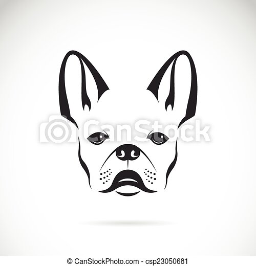 Vector image of an dog (bulldog) on white background - csp23050681
