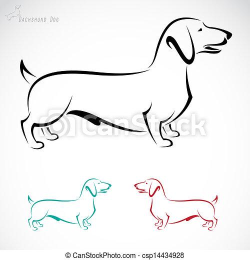 Vector image of an dog (Dachshund)  - csp14434928