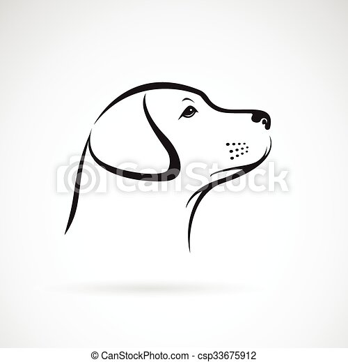 Vector image of an dog labrador on white background - csp33675912