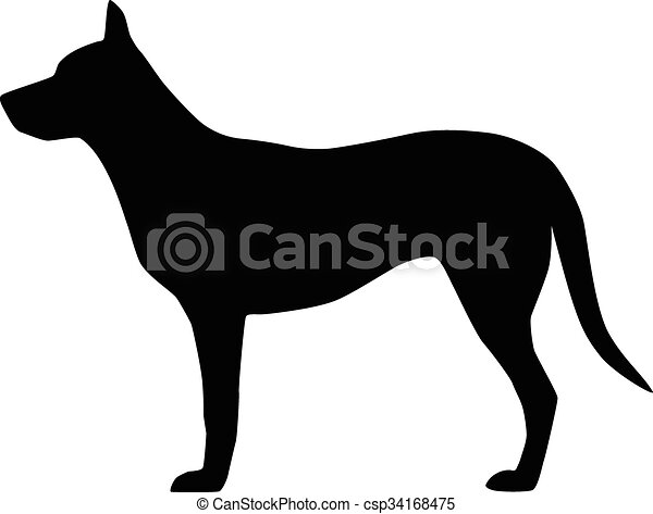 Vector image of an dog on white background - csp34168475