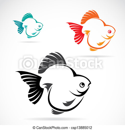 Vector image of an goldfish  - csp13885012