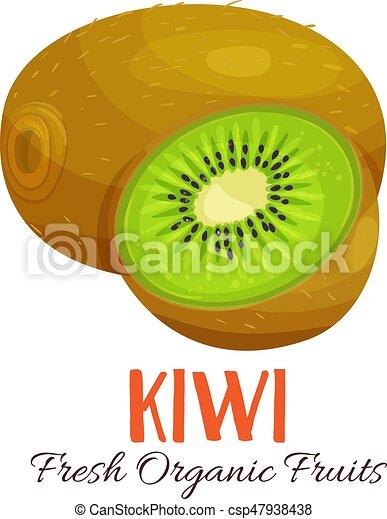 Vector kiwi illustration - csp47938438