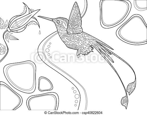 Vector, libro, colorido, adultos, colibrí. Colorido, adultos, vector ...