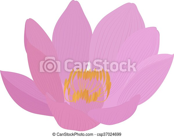 Vector lotus pink flower icon vector lotus blossom pink eps vector lotus pink flower icon mightylinksfo Choice Image