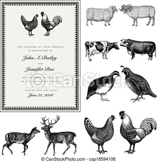 Vector Male and Female Animal Vintage Wedding Invite Set - csp18594108