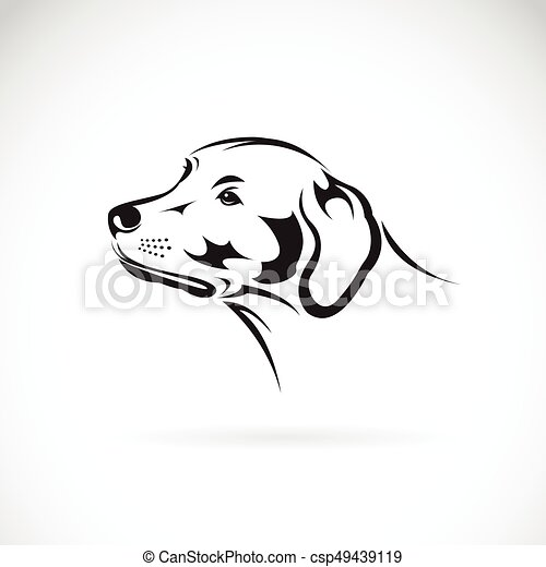 Vector Of A Dog Head Labrador Retriever On White Background Pet