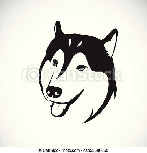 vector of a dog siberian husky on white background pet clipart rh canstockphoto com husky puppy clipart clipart husky dog