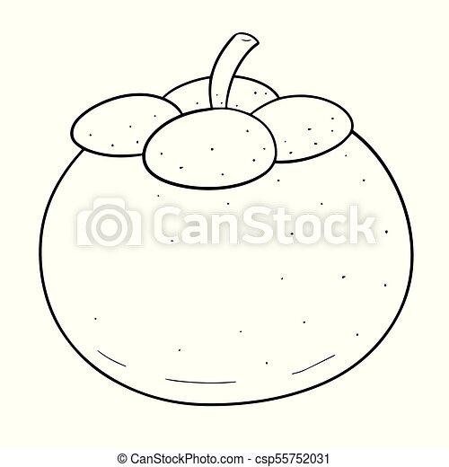 Vector Of Mangosteen