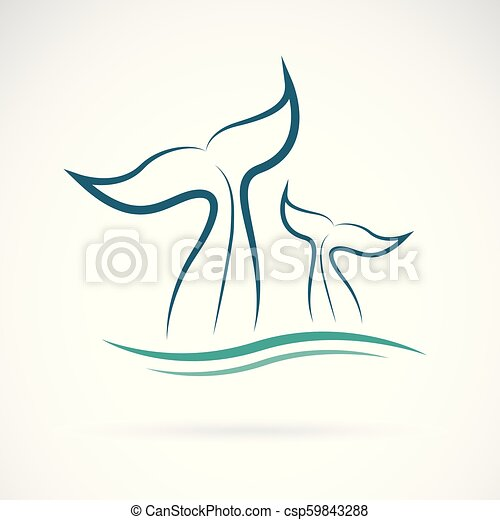 Vector Of Whale Tail Design On White Background Animals Sea