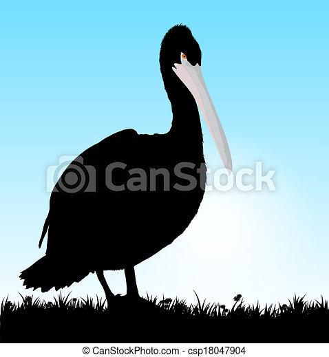 Vector pelican - csp18047904