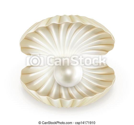 Pearl, vector - csp14171910