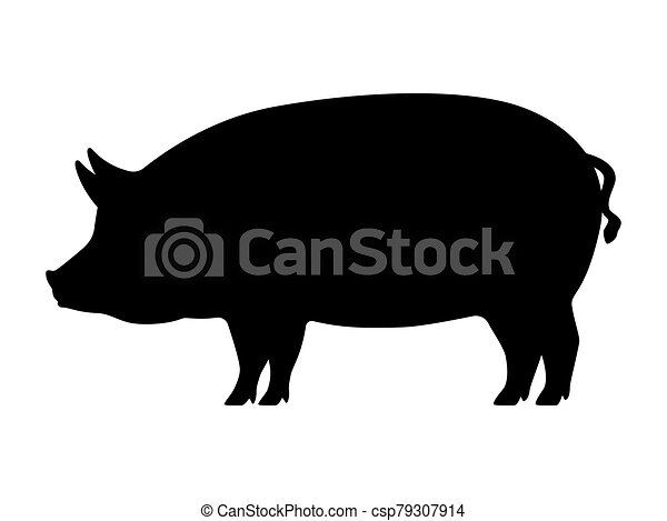 vector pig silhouette. pig silhouette. vector illustration of black icon  logo pig silhouette isolated on white. outline | canstock  can stock photo
