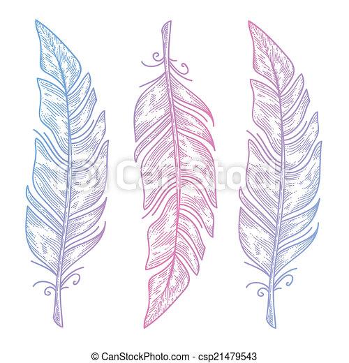 Tres Plumas De Pájaro Vectoriales Tres Plumas De Pájaro