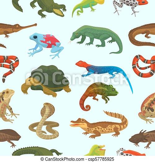 Vector reptile nature lizard animal wildlife wild chameleon, snake, turtle, crocodile illustration of reptilian background green amphibian seamless pattern background - csp57785925