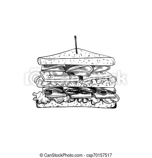 Vector Sandwich with Toothpick Sketch, Hand Drawn Illustration, Outline Black Drawing Isolated. - csp70157517