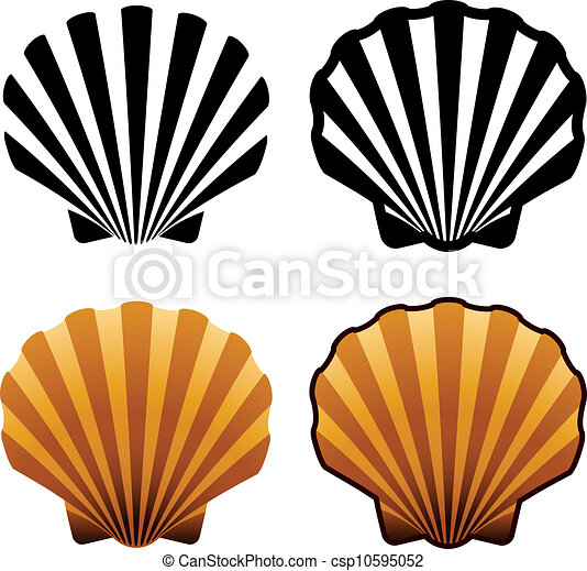 vector sea shells - csp10595052