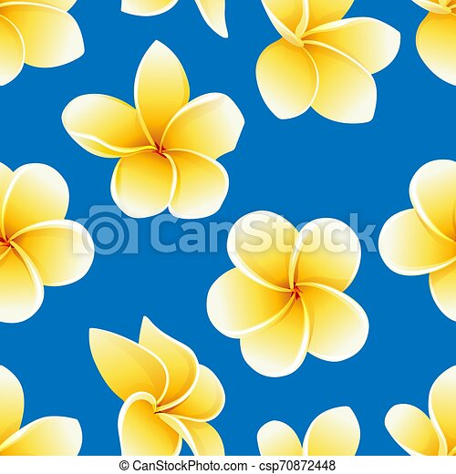 Vector seamless pattern with flower of Plumeria or Frangipani on the blue - csp70872448