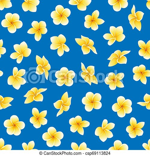 Vector seamless pattern with flower of Plumeria or Frangipani on the blue - csp69113824