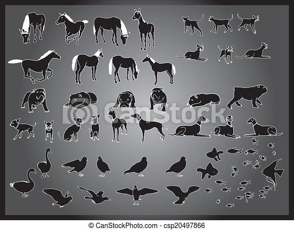 vector set of animals background - csp20497866