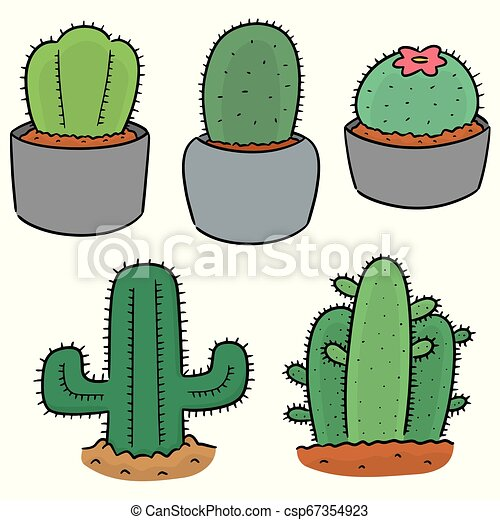 vector set of cactus - csp67354923