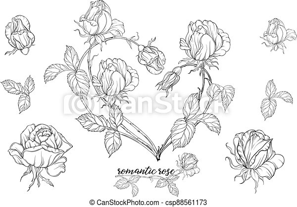 Vector set of flower compositions with rose flowers.Heart of flowers. - csp88561173