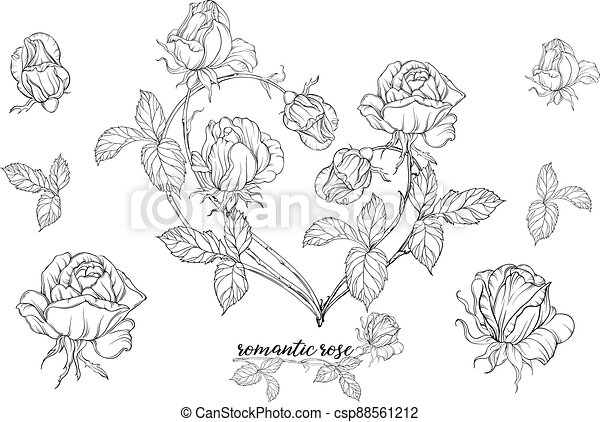 Vector set of flower compositions with rose flowers.Heart of flowers. - csp88561212