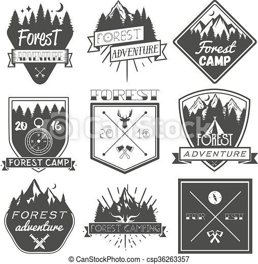 Vector set of forest camp labels in vintage style. design elements ...