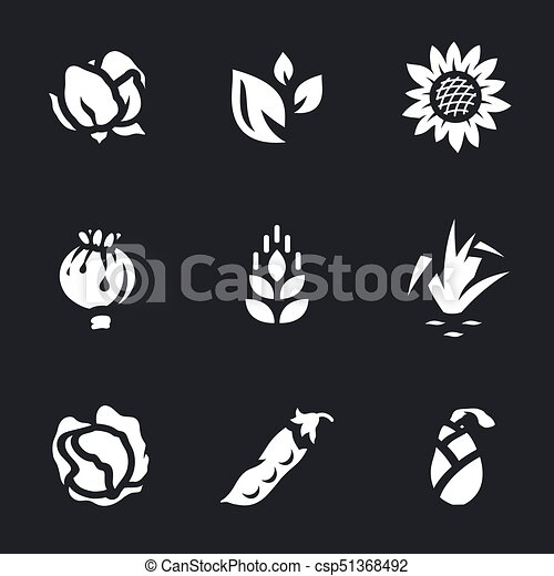 Vector Set of Harvest Icons. - csp51368492