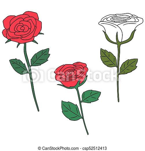 vector set of rose - csp52512413