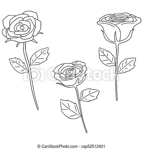 vector set of rose - csp52512401