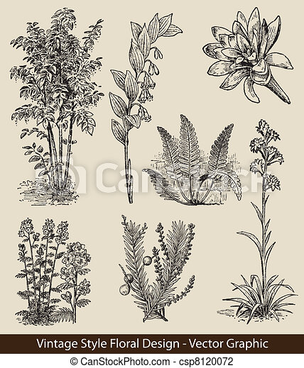 vector set plants and flower - csp8120072
