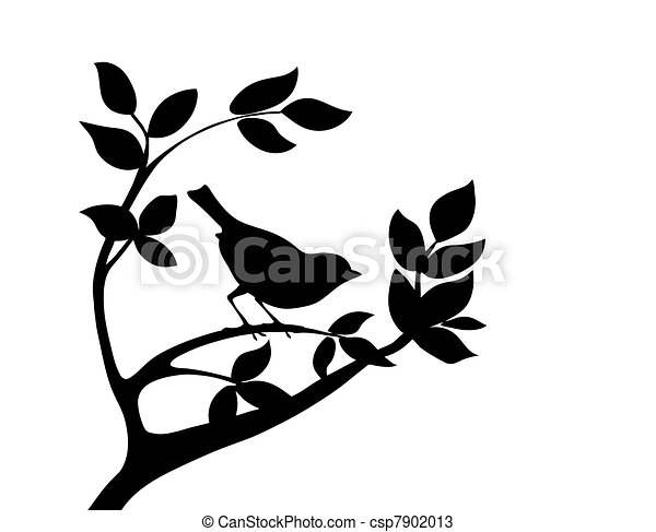 vector silhouette bird on tree - csp7902013