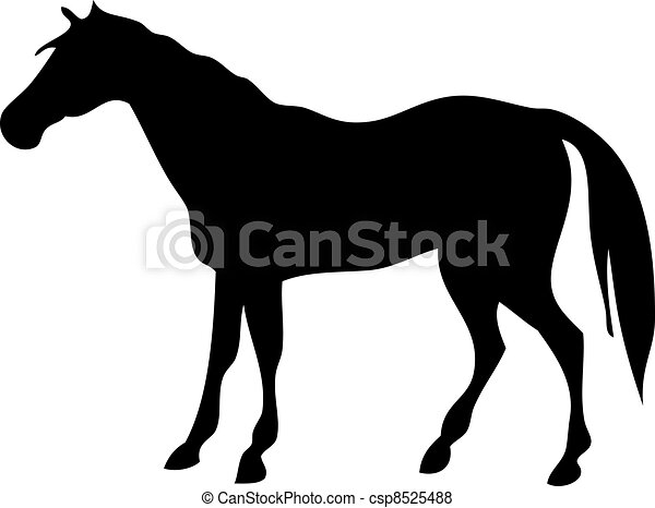 vector silhouette of a horse on a white background - csp8525488