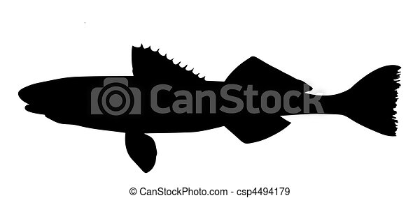 vector silhouette of fish on white background - csp4494179