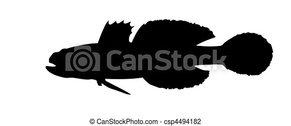 vector silhouette of fish on white background - csp4494182