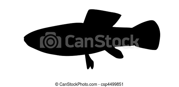 vector silhouette of fish on white background - csp4499851