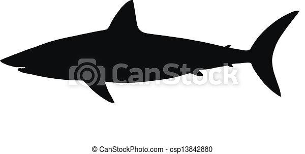 Vector silhouette of shark. - csp13842880