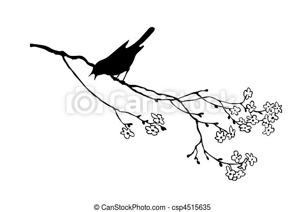 vector silhouette of the bird on branch tree  - csp4515635