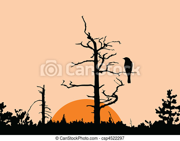 vector silhouette of the bird on dry tree - csp4522297